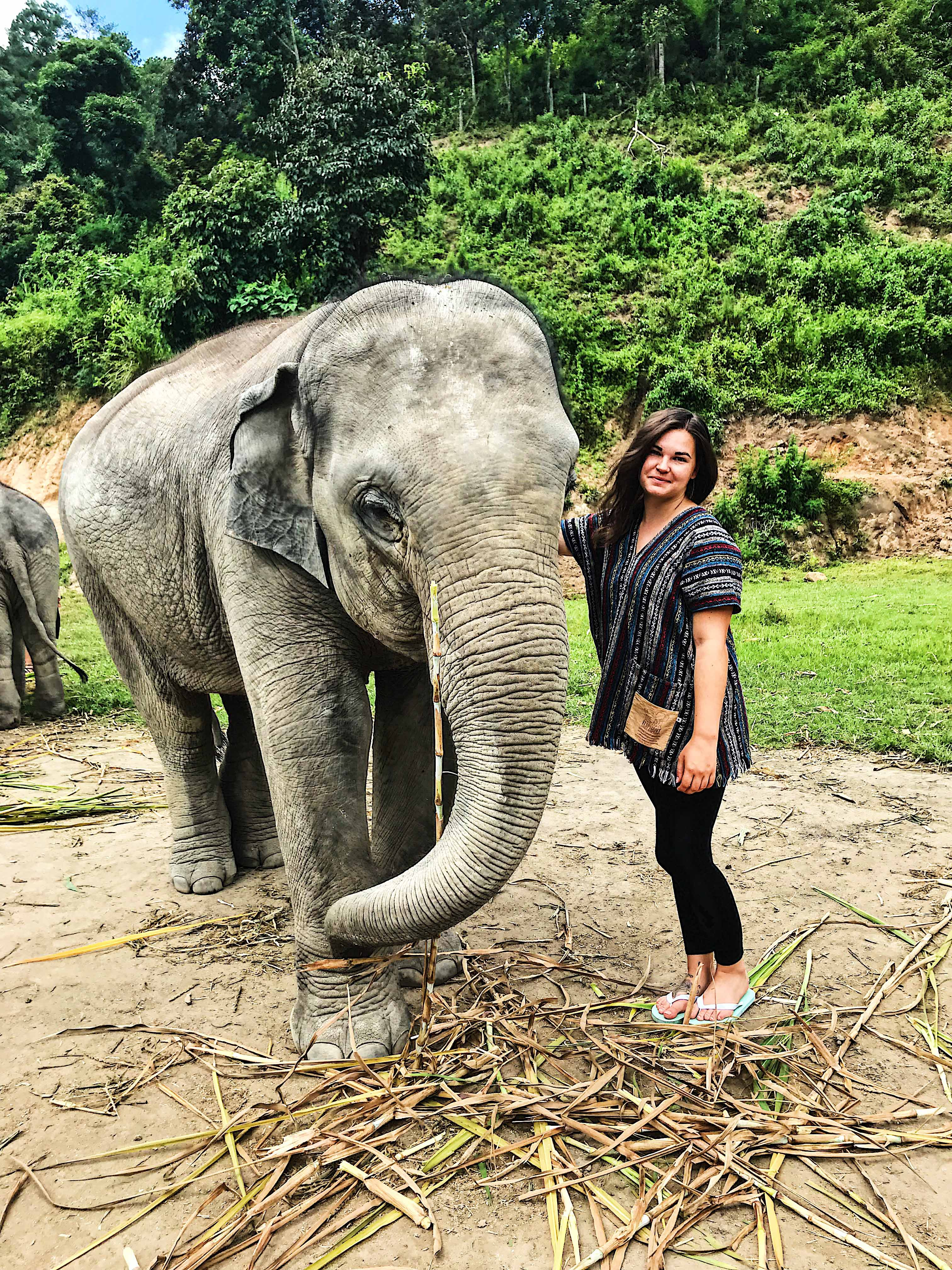 Travel Blogger with Elephant at Elephant Jungle Sanctuary Chiang Mai