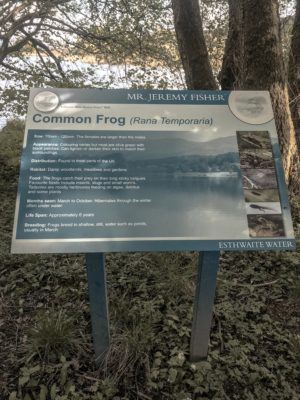 Lake District Road Trip - Beatrix Potter Walking Trail Signs