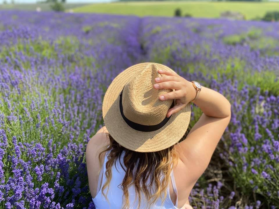 A (Socially Distanced) Day Out at the Cotswold Lavender Fields