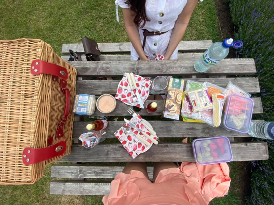 Picnic at the Lavender Fields